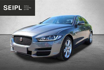 Jaguar XE 20d Pure AWD Aut. bei Autohaus Seipl in